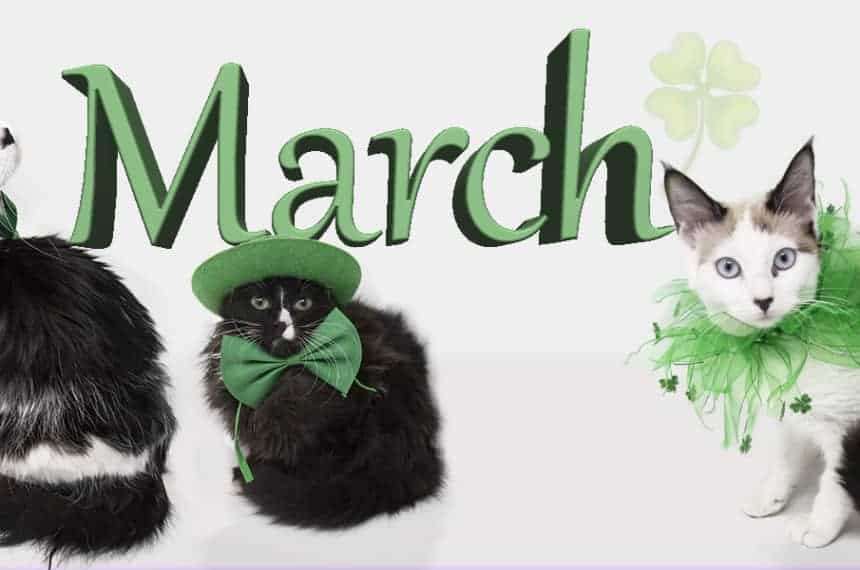 March. Purr-esident's Press