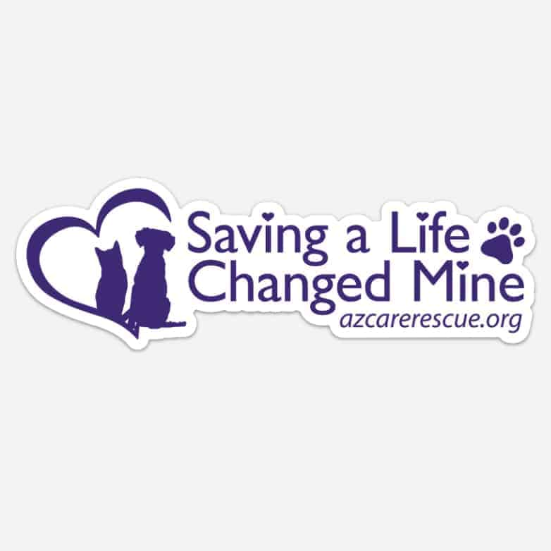 Saving a Life Changed Mine Bumper Sticker