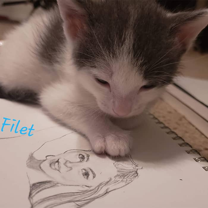 Filet – Adopted